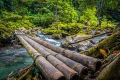 Passerelle en bois au-dessus du fleuve Photographie stock libre de droits