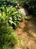 Passerelle en bois dans le jardin Photos stock