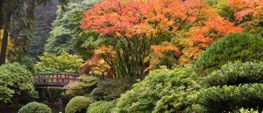 Passerelle en bois de pied au jardin japonais dans l'automne Images libres de droits