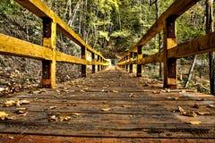 Passerelle en bois HDR photographie stock