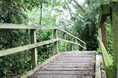 Passerelle en bois isolée Image libre de droits