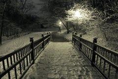 Passerelle en bois sous la neige Photo libre de droits