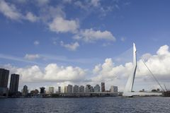 Passerelle Erasmusbrug de Rotterdam Photo stock