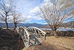 Passerelle et arbre dans le hdr japonais Image libre de droits