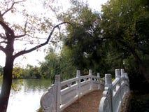 Passerelle et lac Image libre de droits