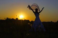 Passerelle heureuse dans le coucher du soleil. Image libre de droits