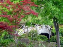 Passerelle japonaise de jardin image stock