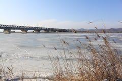 Passerelle par le fleuve Images libres de droits