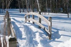 Passerelle pendant l'hiver Photo libre de droits