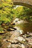 Passerelle rapide de fleuve Photographie stock libre de droits