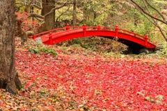 Passerelle rouge Photo libre de droits