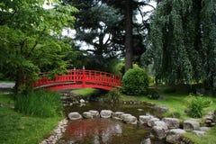 Passerelle rouge dans un jardin japonais Photo libre de droits