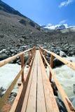 Passerelle suisse d'itinéraire aménagé pour amateurs de la nature de glacier d'Alpes Images libres de droits