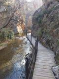 Passerelle sur le fleuve photos libres de droits
