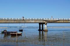 Passerelle sur le fleuve image libre de droits