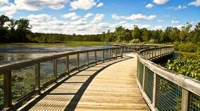 Passerelle sur le lac Photos stock