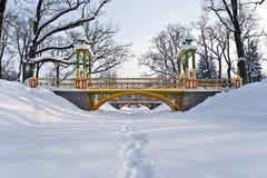 Passerelles au-dessus de fleuve de l'hiver Photographie stock libre de droits