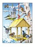 Passero del cardellino del capezzolo della betulla dell'alimentatore dell'uccello di inverno royalty illustrazione gratis