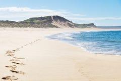 Passi alla spiaggia di Peterborough alla grande strada dell'oceano, Victoria, Australia Immagine Stock Libera da Diritti