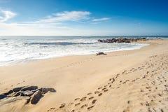 Passi dei punti sulla spiaggia immagine stock libera da diritti
