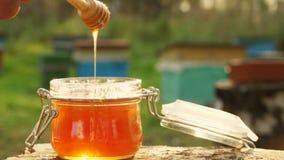 Passi e una ciotola di miele su un fondo di un'arnia Primo piano stock footage