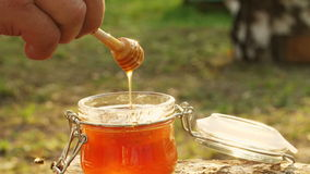 Passi e una ciotola di miele su un fondo di un'arnia Primo piano video d archivio