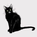 Passi il disegno del gatto nero con gli occhi verdi Fotografia Stock Libera da Diritti