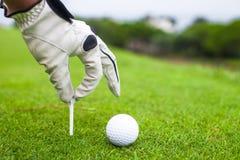 Passi la collocazione della palla da golf sul T sopra il bello golf Immagini Stock
