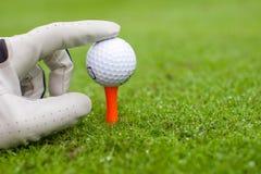 Passi la collocazione della palla da golf sul T sopra il bello golf Fotografie Stock
