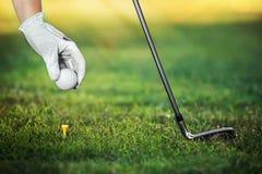 Passi la palla da golf della tenuta con il T sul corso, primo piano Fotografia Stock Libera da Diritti