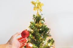 Passi la palla rossa d'attaccatura di Natale sull'albero di Natale per la decorazione nella festa Fotografia Stock Libera da Diritti