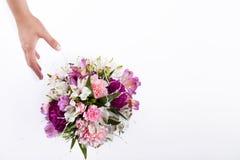 Passi la ricezione del mazzo pastello dal gillyflower rosa e porpora Fotografia Stock Libera da Diritti