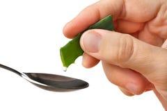 Passi la spremuta del succo fresco da un aloe vera nel cucchiaio Fotografie Stock Libere da Diritti