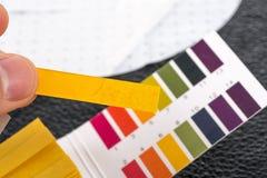 Passi la tenuta dell'indicatore di pH che confronta il colore alla scala Fotografia Stock Libera da Diritti