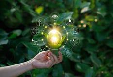 Passi la tenuta della lampadina sulla natura verde con le icone Fotografie Stock Libere da Diritti