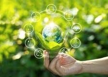 Passi la tenuta della lampadina sulle foglie verdi con le icone di fonte di energia fotografia stock