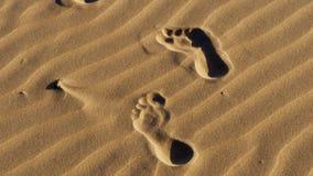 Passi nella sabbia su una spiaggia video d archivio