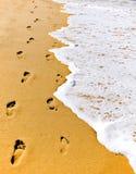 Passi in sabbia Fotografie Stock Libere da Diritti