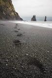 Passi in sabbia nera Fotografie Stock Libere da Diritti