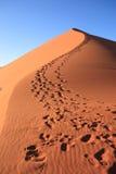 Passi sulla duna immagine stock