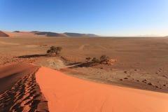 Passi sulla duna fotografie stock