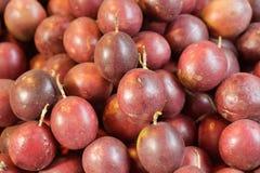 Passiflora commestibile Fotografie Stock Libere da Diritti