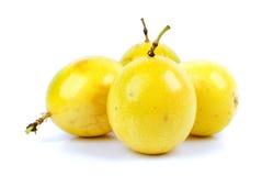 Passiflora commestibile immagine stock