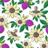 Passiflora della passiflora, frutta porpora di passione su un senza cuciture floreale del fondo bianco illustrazione vettoriale