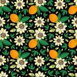 Passiflora della passiflora, frutto della passione su un fondo nero Modello senza cuciture floreale con i grandi fiori esotici lu illustrazione vettoriale