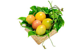 Passiflora edulis Fotografia Stock