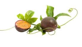 Passiflora Fruits And Vine Stock Photos