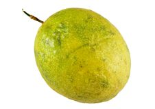 Passiflore comestible de passiflore tropicale Photographie stock