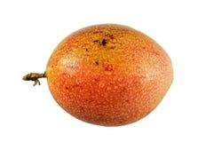 Passiflore comestible de passiflore tropicale organique Images libres de droits