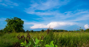 Passing Clouds Over Grassland In The Morning stock footage